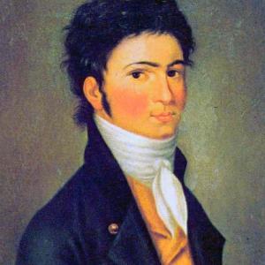Young Ludwig van beethoven