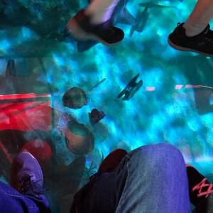 Ripleys aquarium glass bottom boat water Myrtle Beach South Carolina