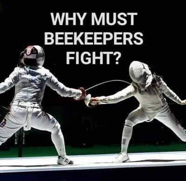 Memes Why do beekeepers fight