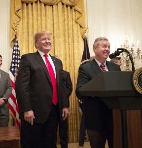 Donald trump and Lindsay Graham