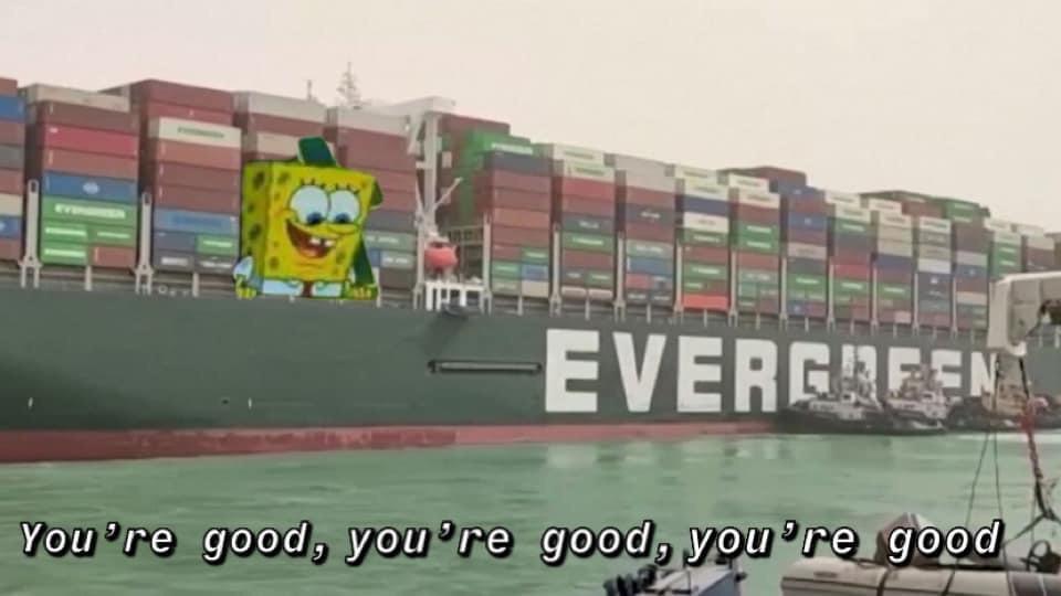 Memes Duck boat Suez Canal