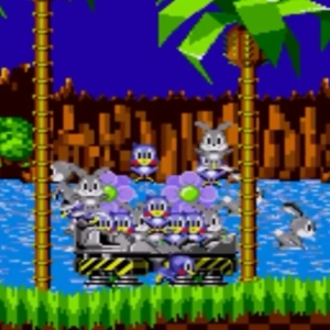 Animals freed by sonic green hill zone sonic the Hedgehog 1 Sega genesis Sega mega drive
