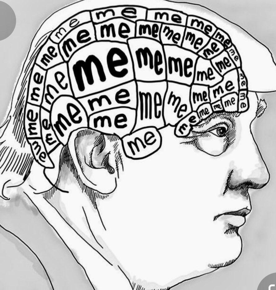 Memes How Donald Trump brain works