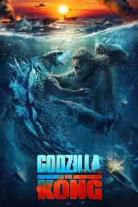 Godzilla vs. Kong movie poster Warner Brothers