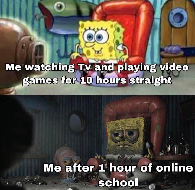 Memes Online school