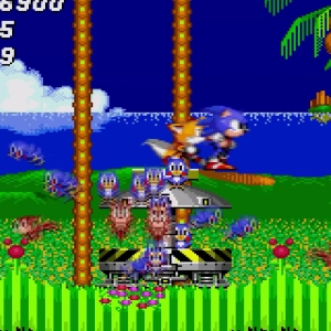 Animals freed green hill zone Sonic the Hedgehog 2 Sega genesis Sega mega drive
