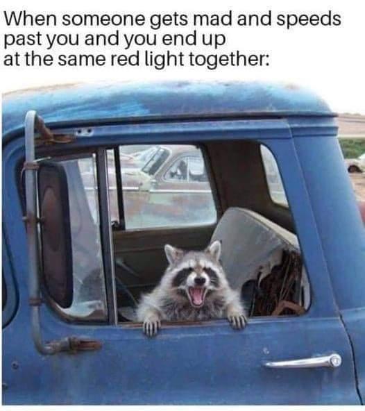 Memes Road rage red light