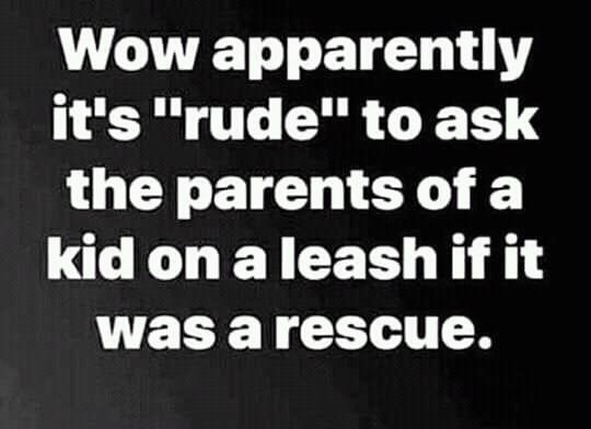 Sensitive parents meme LOL funny
