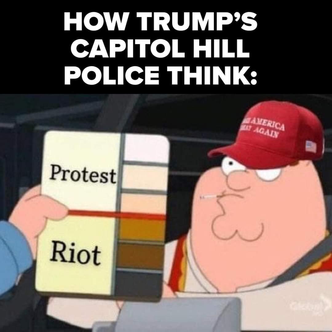 Memes Crazy Trump supporters