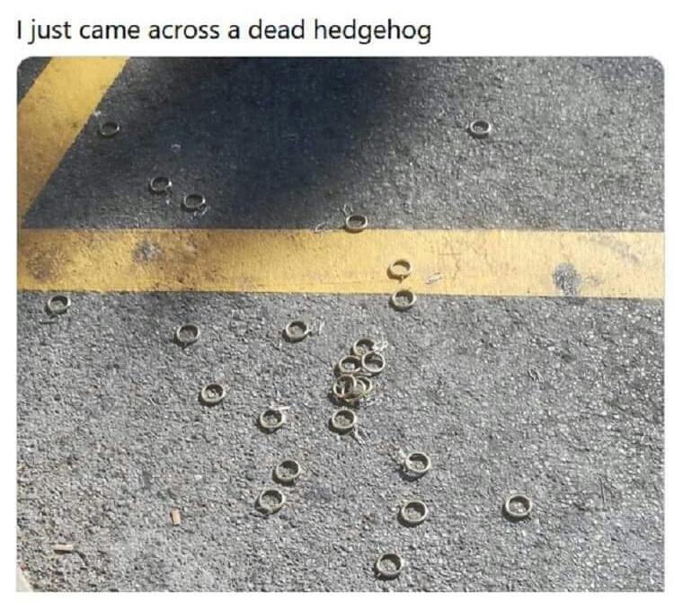 Memes Sonic the hedgehog