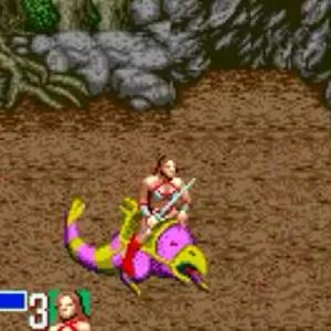 Chicken Leg Tyris Flare golden axe Sega genesis arcade