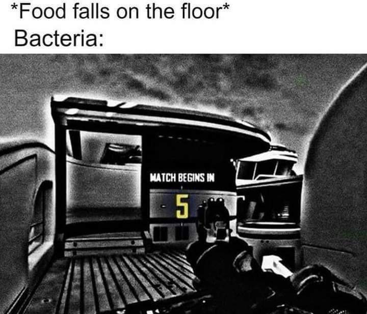 Memes Five second rule food on the floor