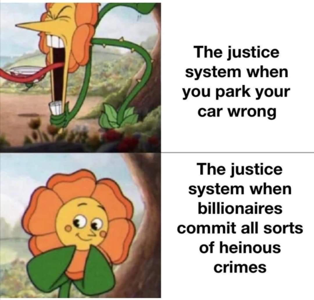 Memes The justice system protects millionaires
