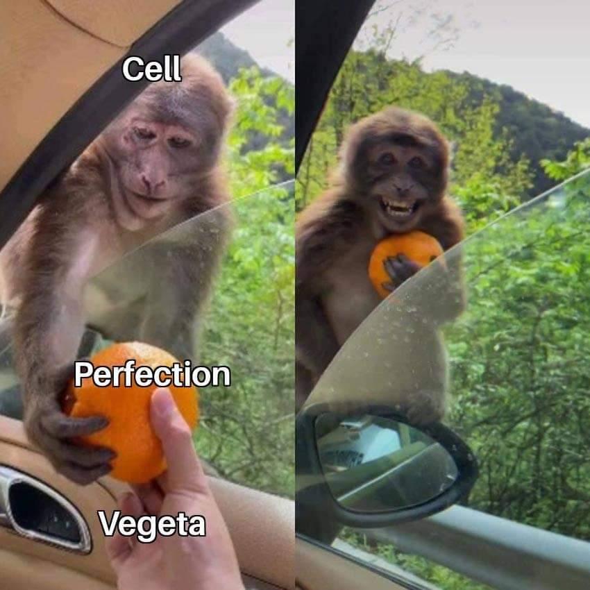 Memes vegeta and cell Dragon Ball Z anime