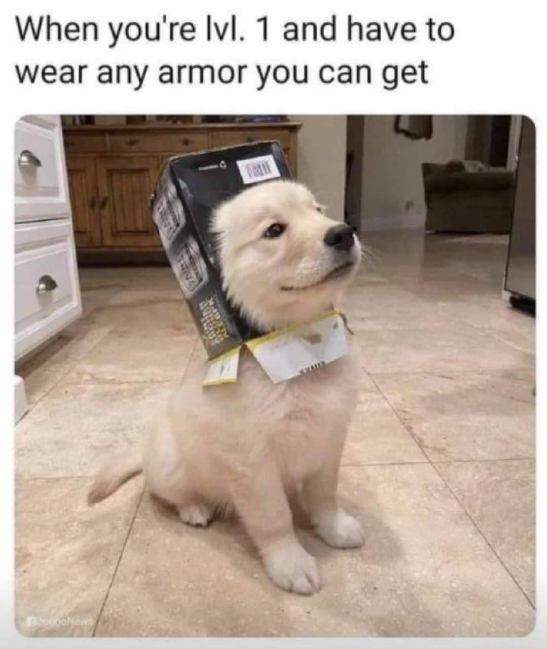 Memes RPG armor level one