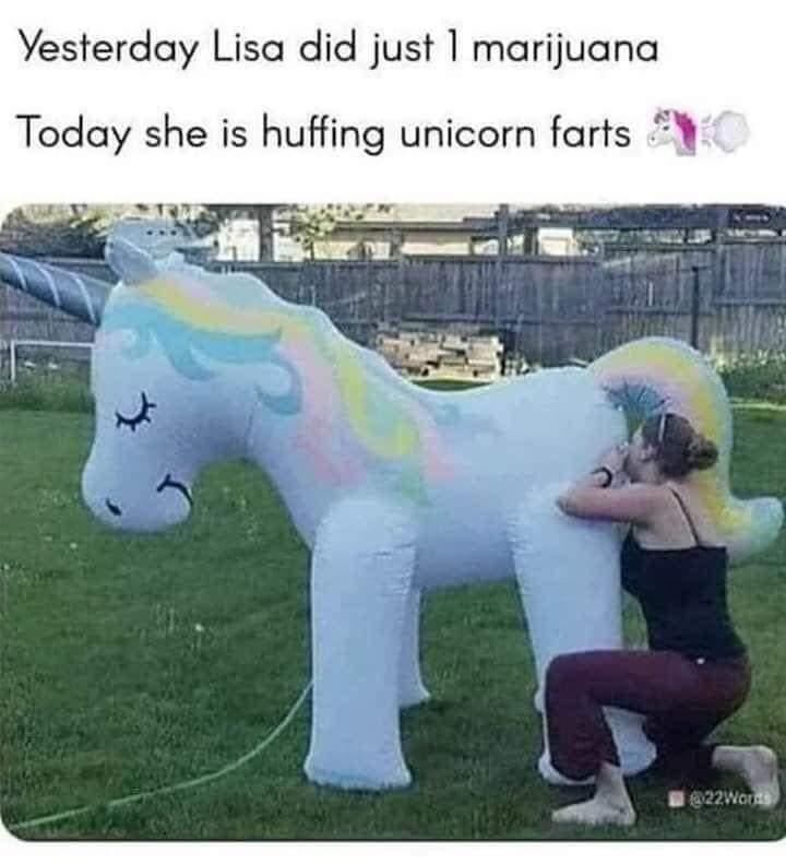 Memes Unicorn farts