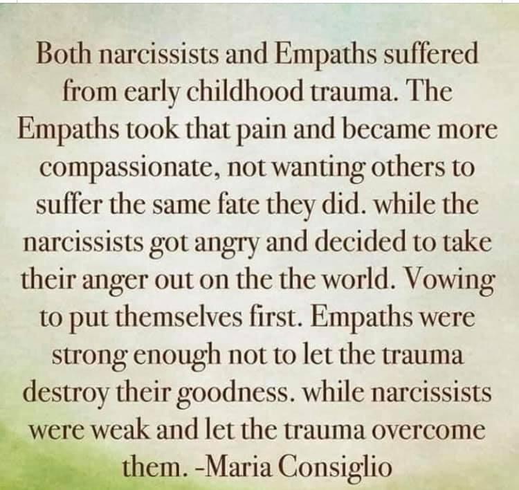 Memes  Narcosis versus empaths