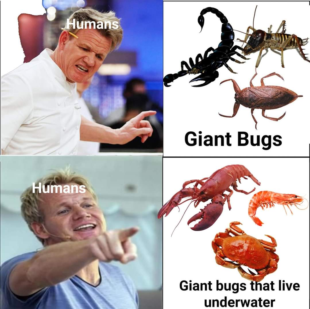 Memes Lobsters crabs and shrimp
