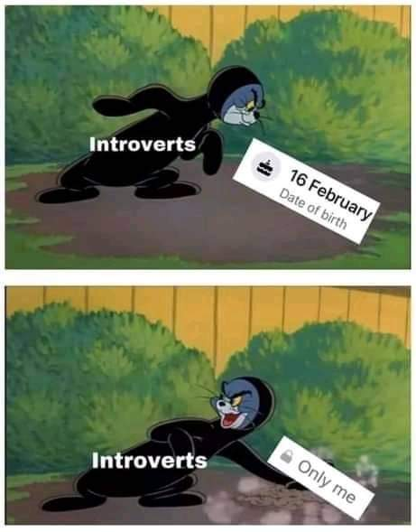 Memes Introverts