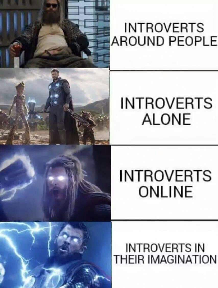 Memes introverts in their imagination