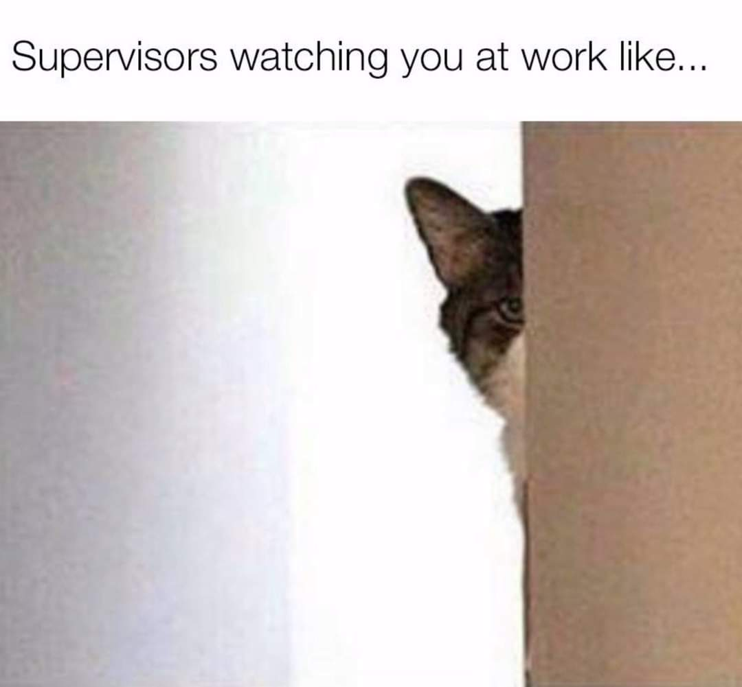 Memes Your boss looking at you at work