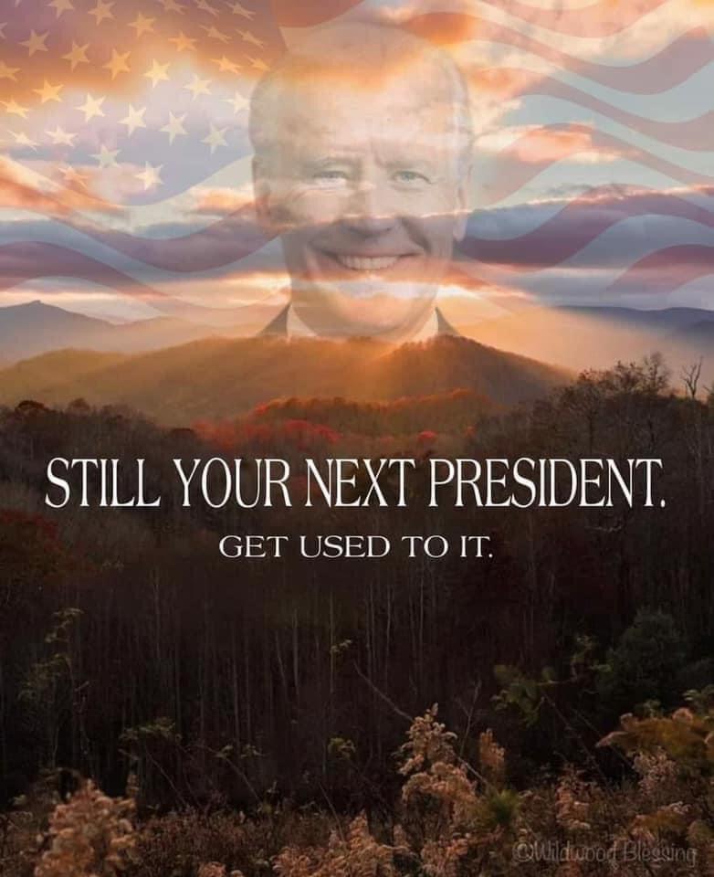 Memes Joe Biden is your next president