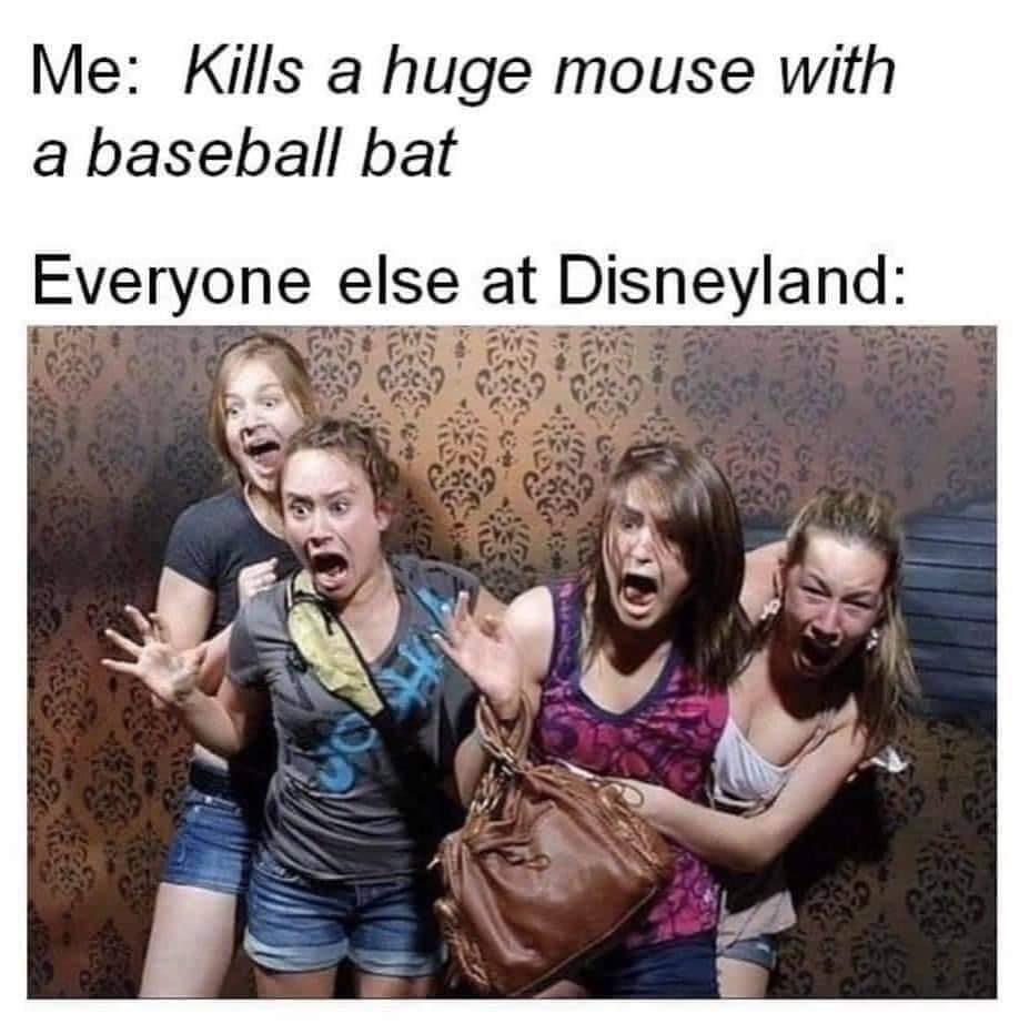 Memes Disneyland Mickey Mouse