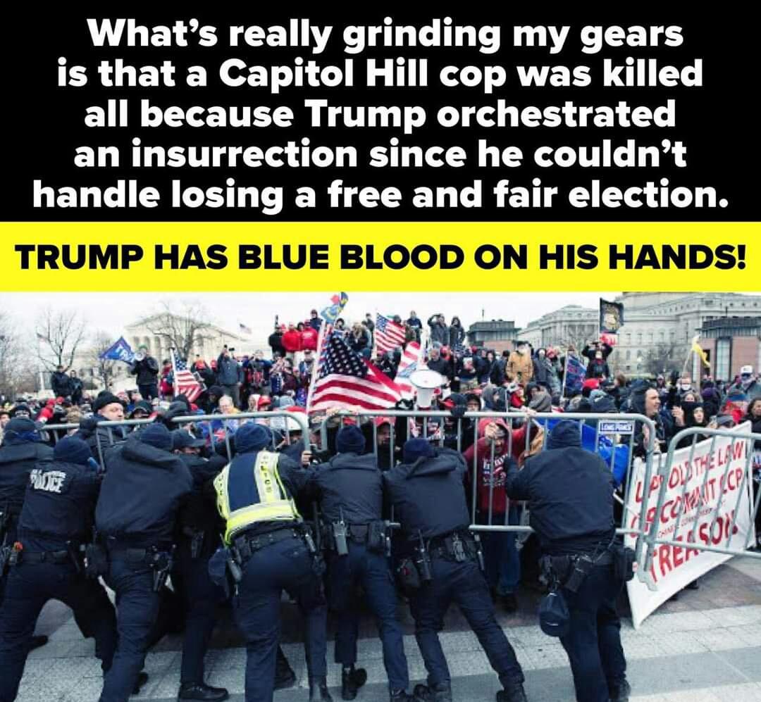 Memes Donald Trump guilty capital riots