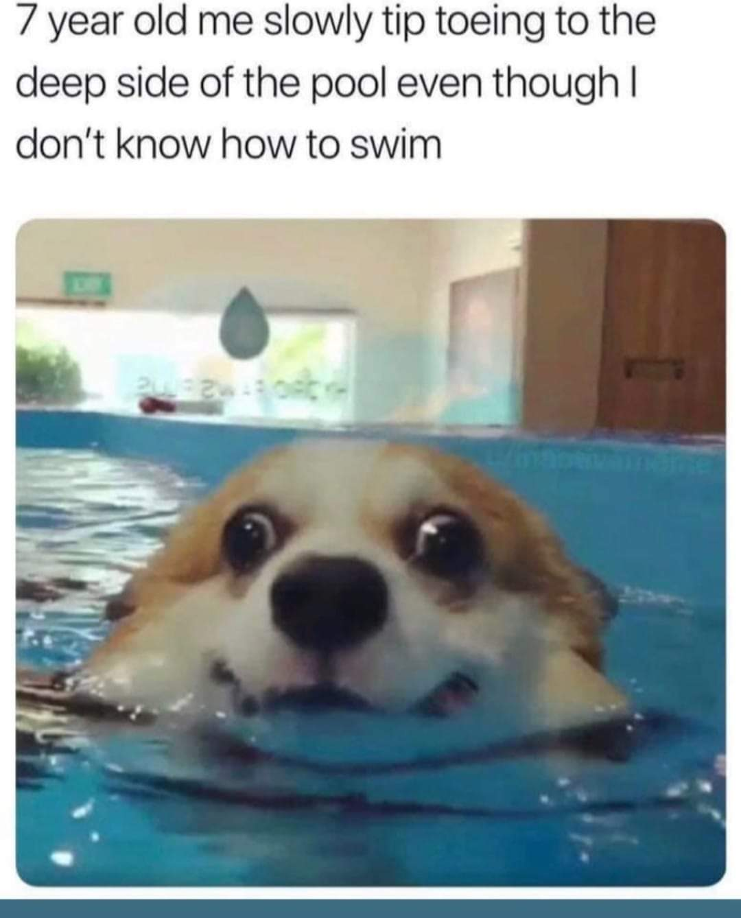 Memes Standing in the pool as a kid deep end