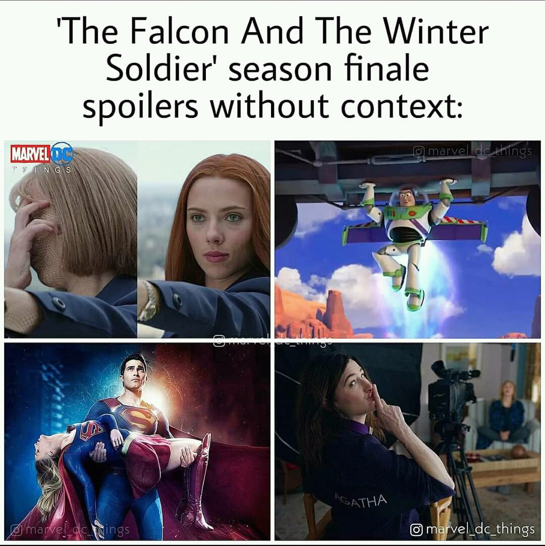 Memes The falcon and the Winter soldier