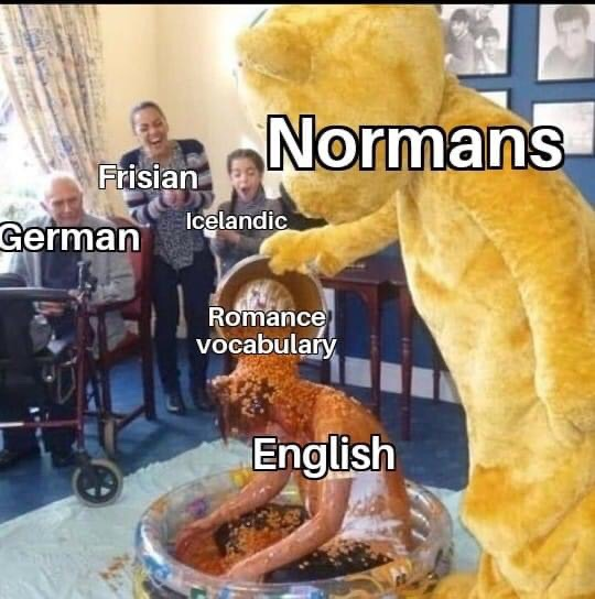 Memes Norm in French and the English language