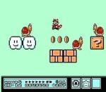Big world little world super Mario Bros 3 nes Nintendo