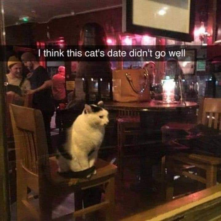 Memes Getting stood up on a date