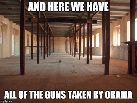 Memes Barack Obama gun control