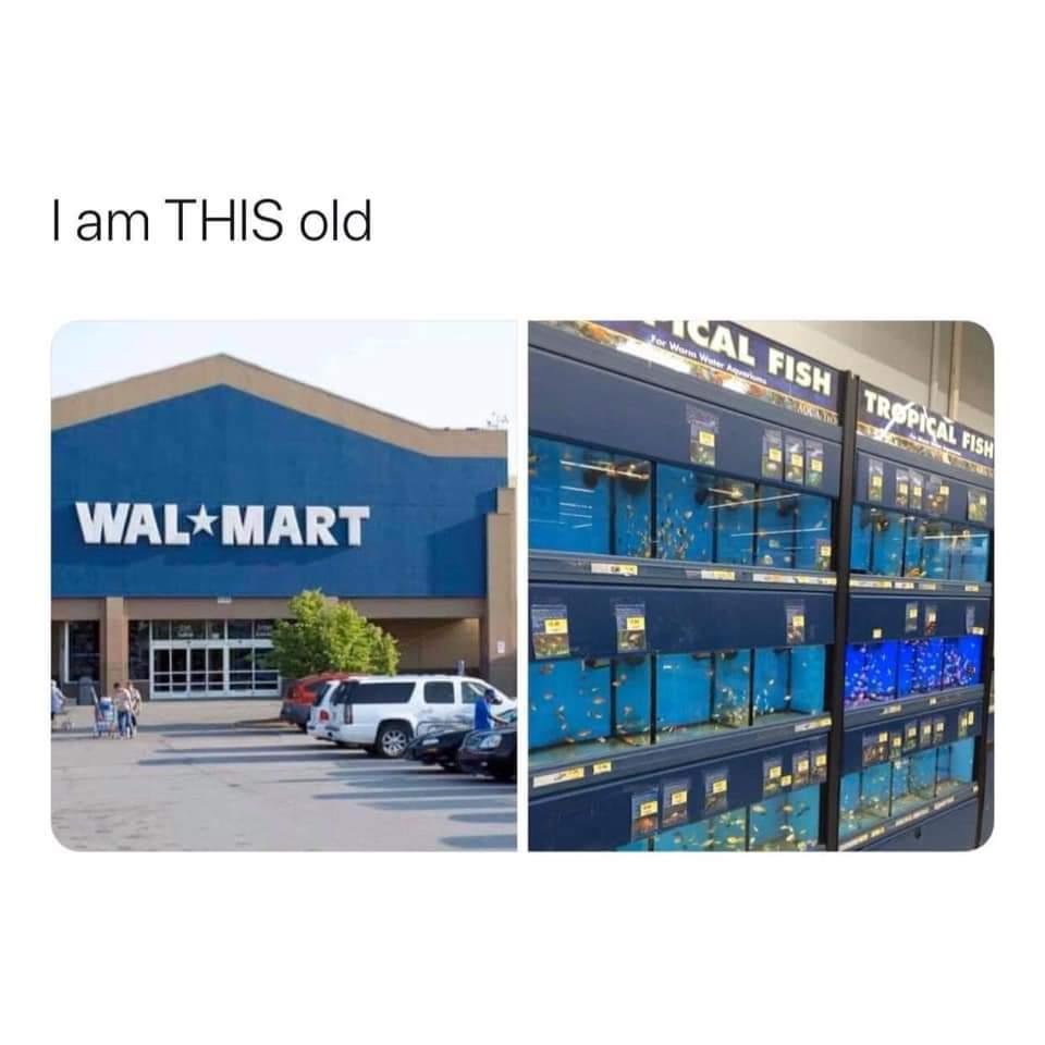 Memes Walmart fishtanks