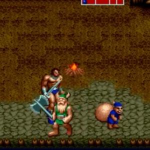 Blue Thief ax Battler Gilius Thunderhead golden axe Sega genesis arcade