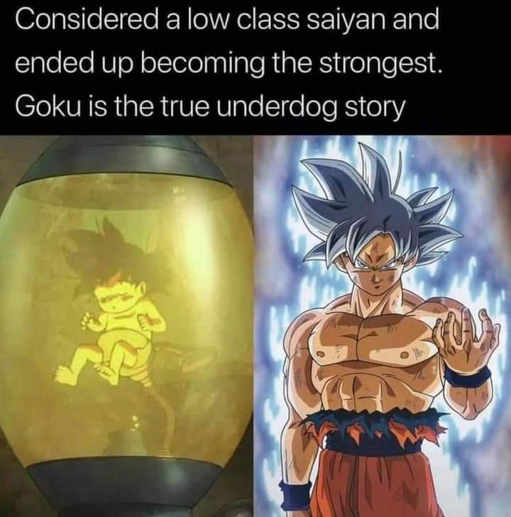 Memes Goku underdog dragon ballDragon Ball Z Dragon Ball super