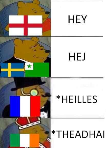 Memes Irish language