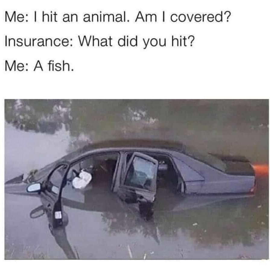 Memes Car accident in lake