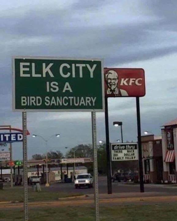 Memes Bird sanctuary Kentucky fried chicken KFC