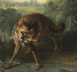 Big nasty brown wolf