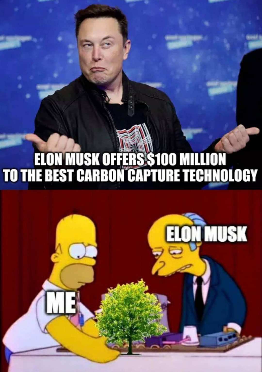 Memes Elon musk carbon technology