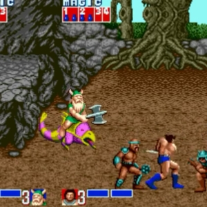 Chicken Leg Gilius Thunderhead golden axe Sega genesis arcade