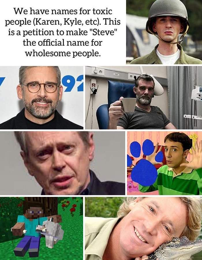 Memes People named Steve