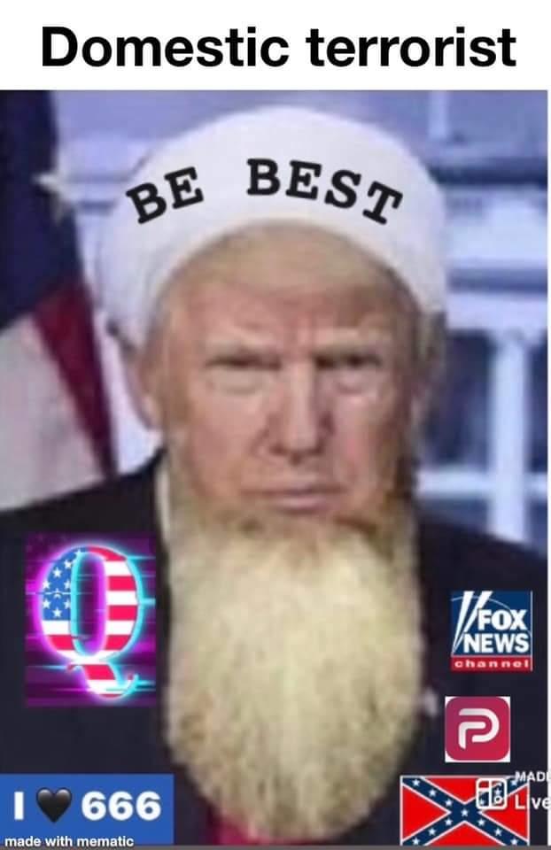 Memes Donald Trump is a domestic terrorist