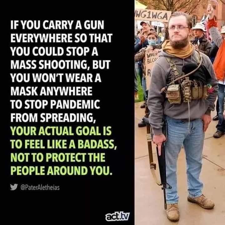 Memes Republicans are domestic terrorist