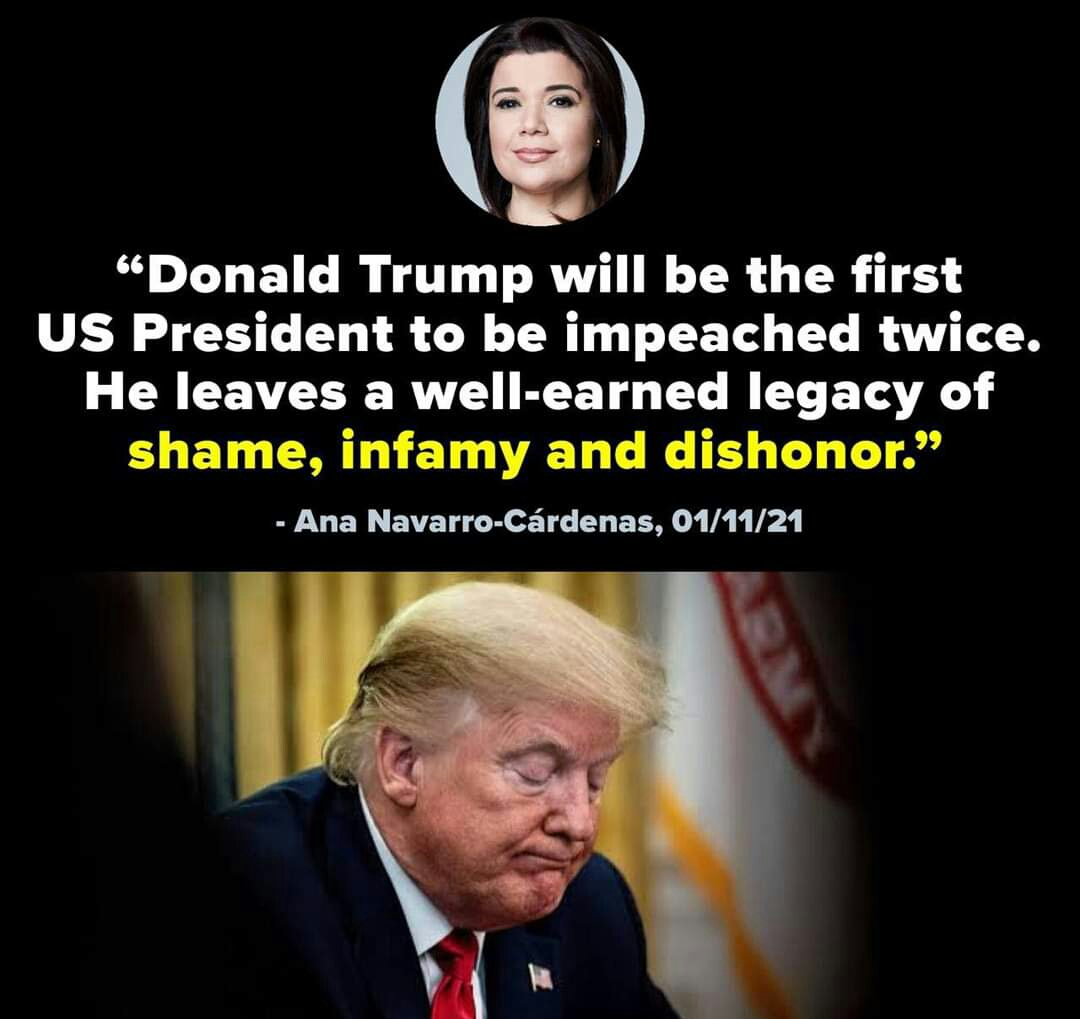 Memes Donald Trump will be the twice impeached president