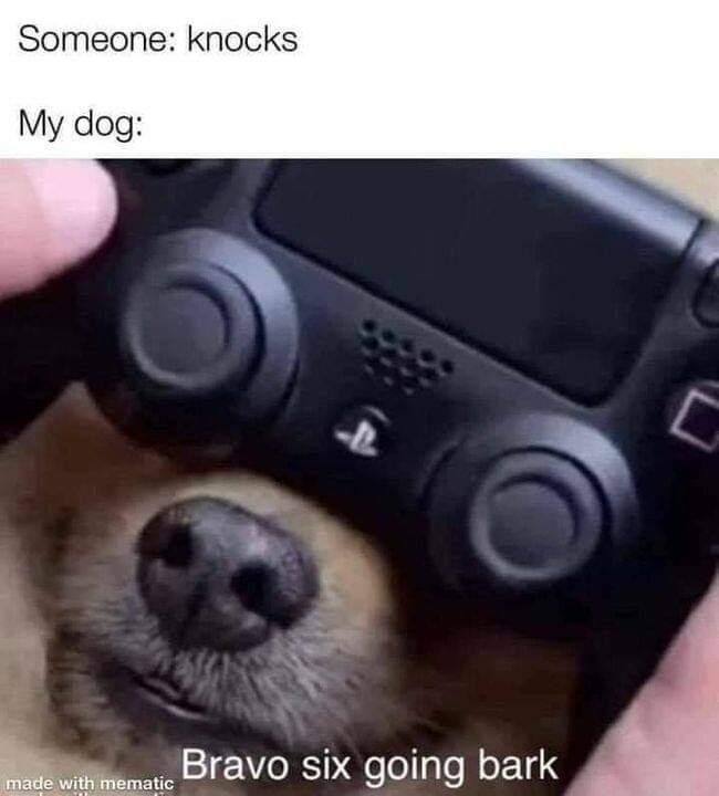 Memes Bravo six going bark