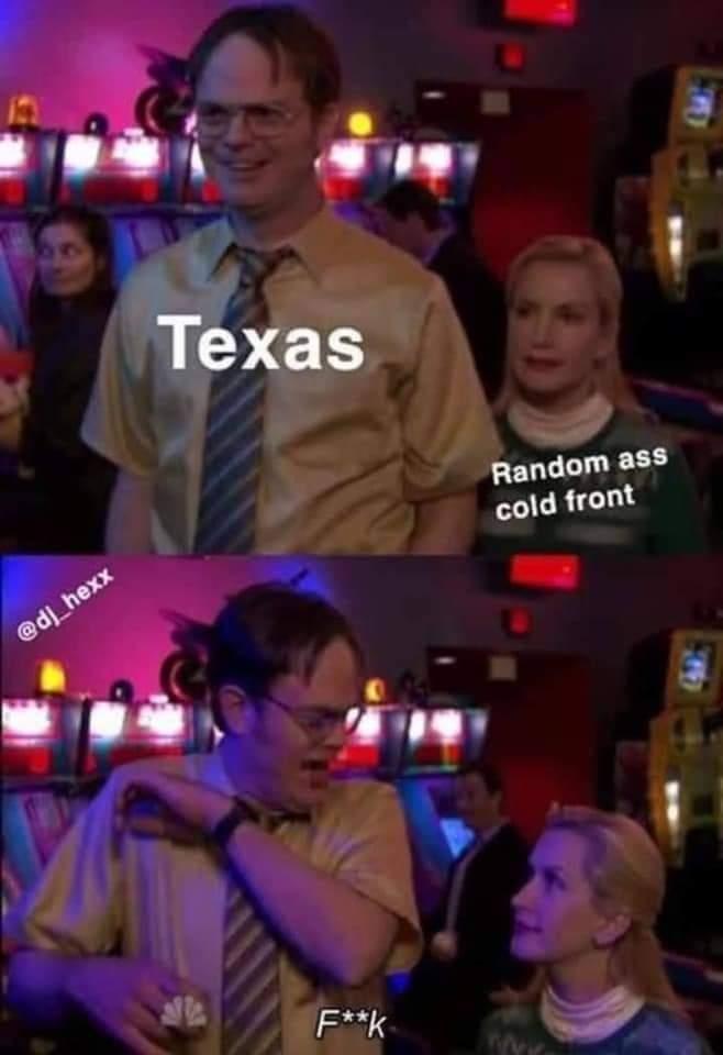 Memes Winter in Texas 2021