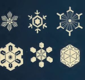 All types of snowflakes